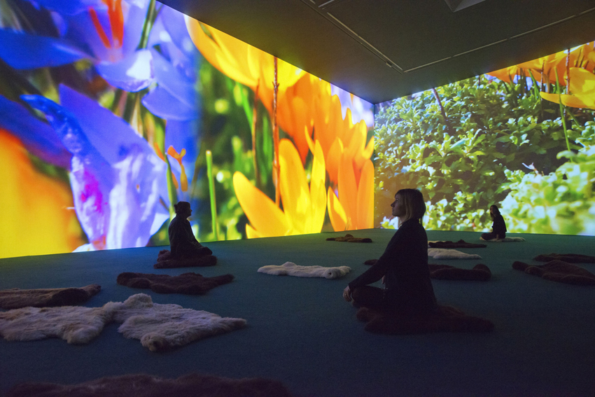 Installation view 13 for Pipilotti Rist: Stay Stamina Stay