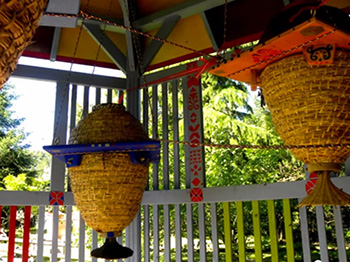 Sun Hive Workshop