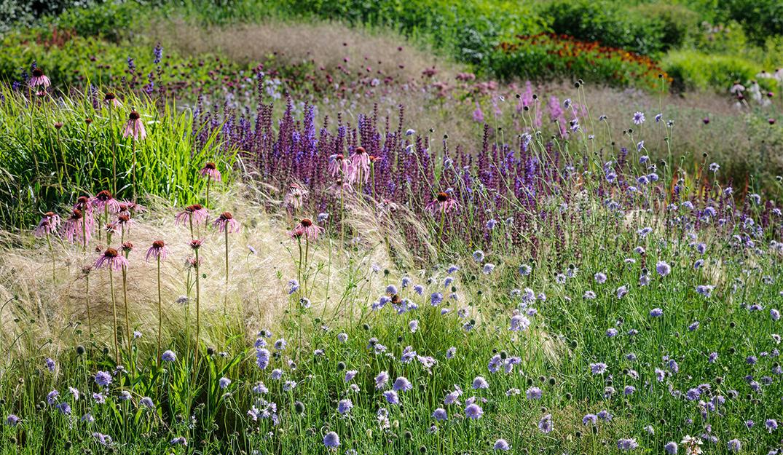 Garden hauser wirth somerset for Piet oudolf serpentine gallery
