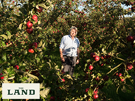 Thrifty Thursdays: Julian Temperley, Apples and Cider on the Somerset Levels
